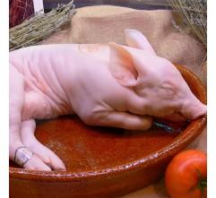 Cerdo - Cochinillo